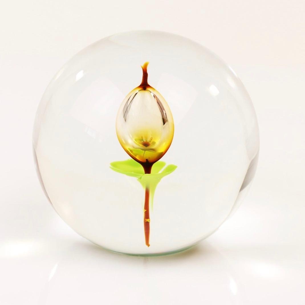 Loranto Ozzaro kristal bol 'Tulp bruin'