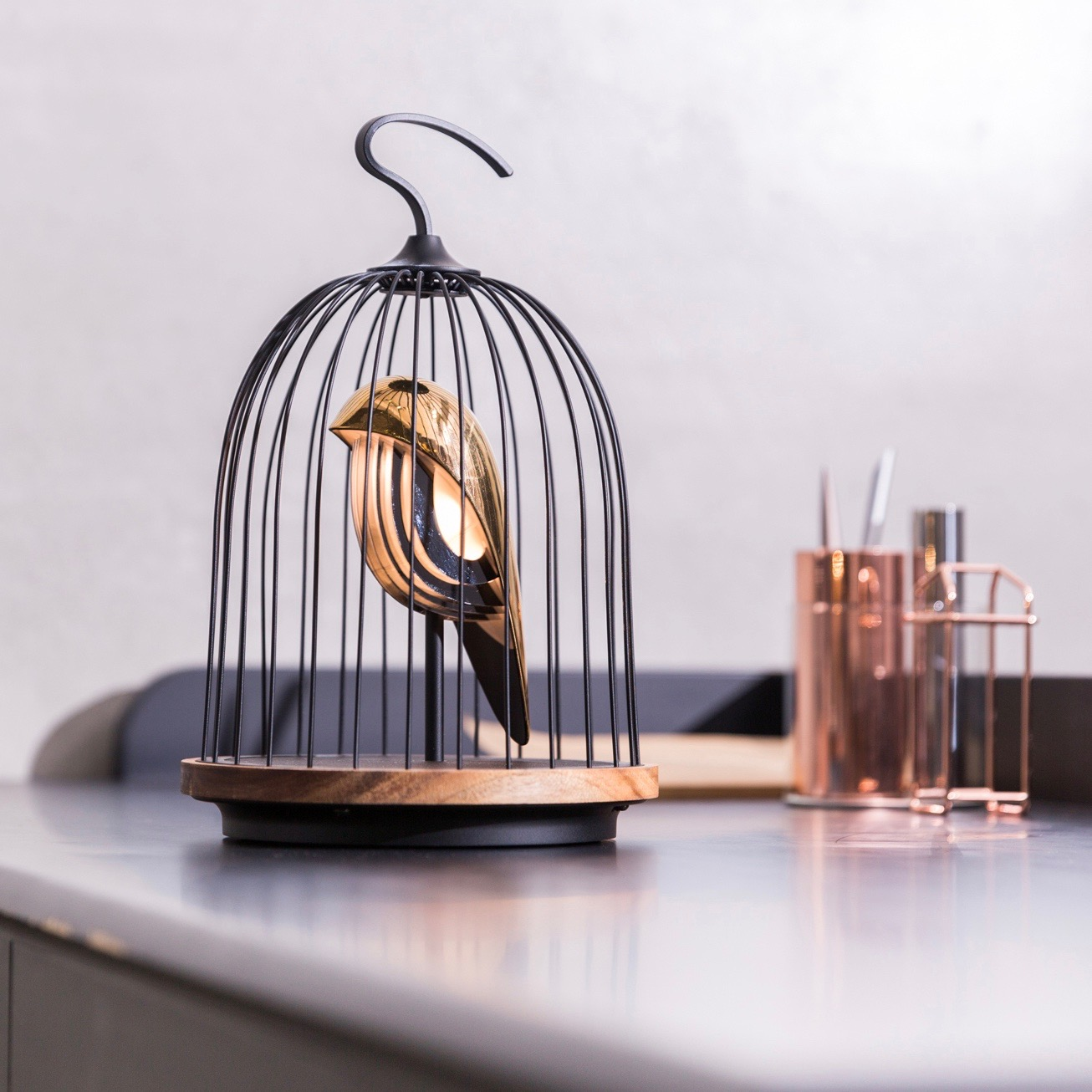 DAQIconcept Jingoo Bluetooth speaker 'The Phoenix'