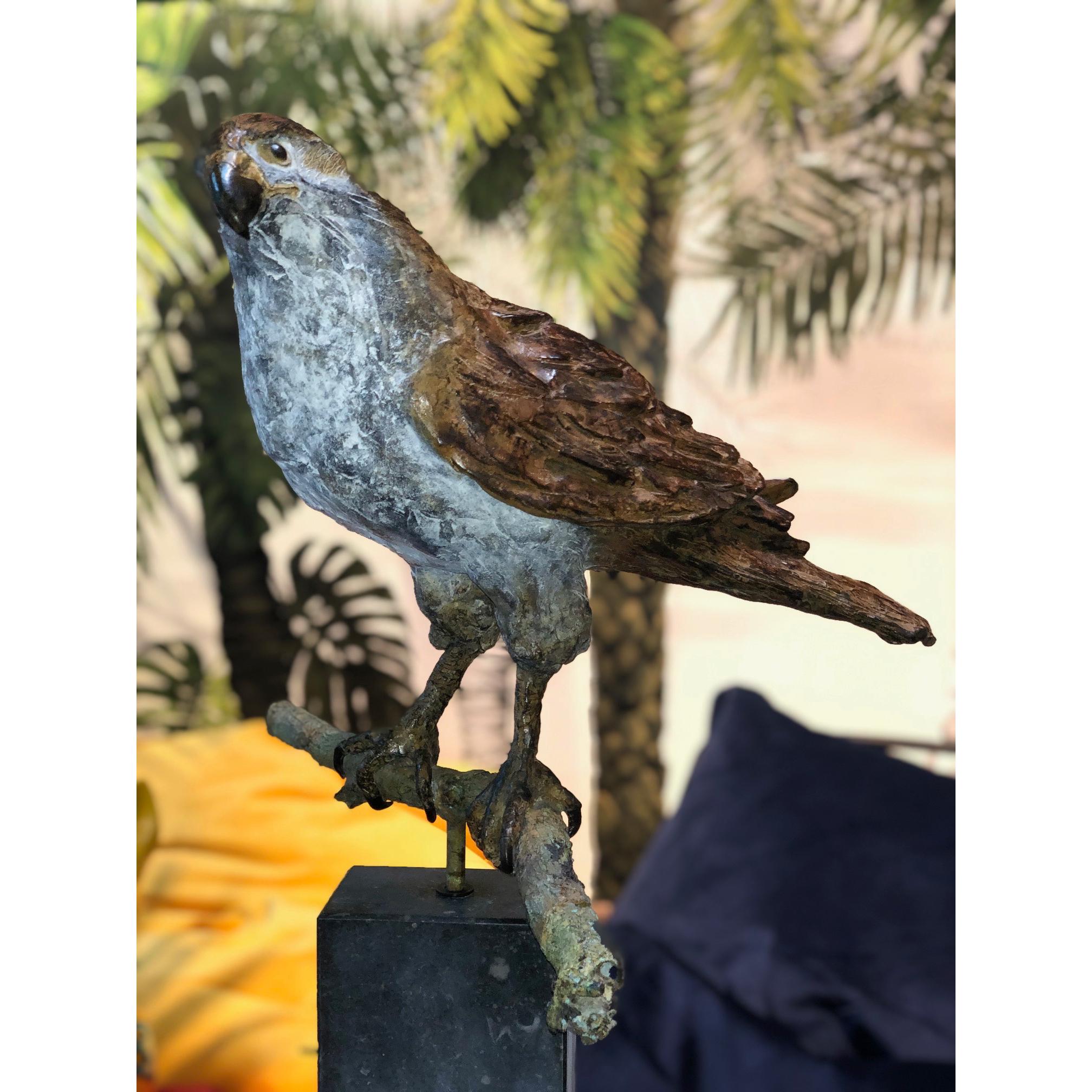 Rob Nagtzaam bronzen beeld 'Valk op tak'