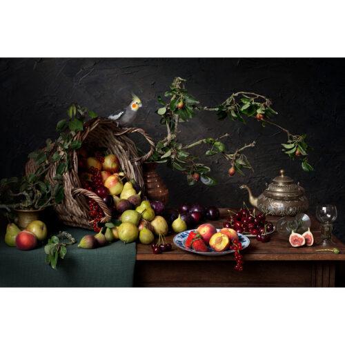 Hester Blankestijn fotografie 'Summer Harvest'